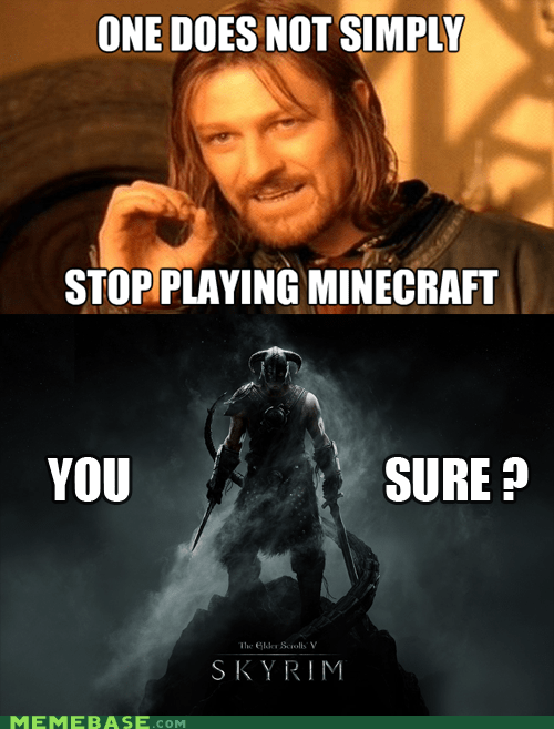 minecraft,one does not simply,Skyrim,video games
