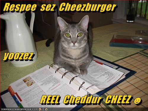 Cheezburger Image 5500557312