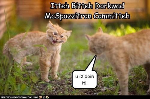 Itteh Bitteh Dorkwad McSpazzitron Committeh u iz doin it!!