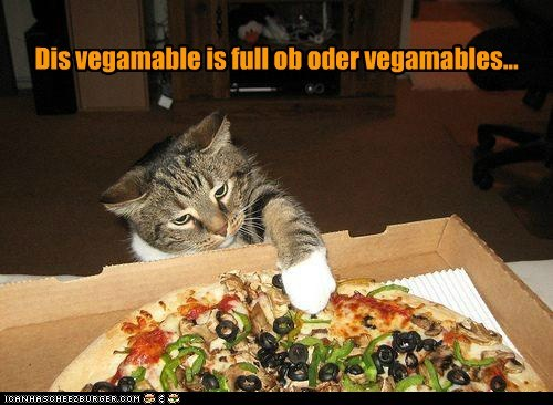 caption captioned cat full other pizza this vegetable vegetables - 5500949248