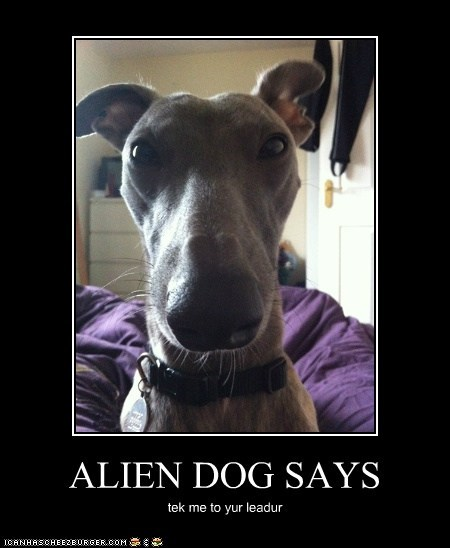 ALIEN DOG SAYS tek me to yur leadur