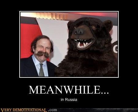 bear hilarious mustache russia wtf - 5501972224