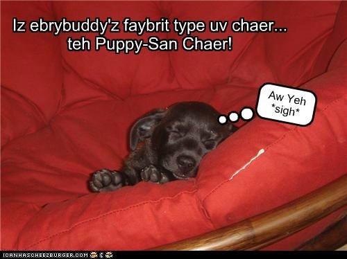 Cheezburger Image 5502333696