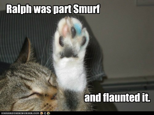 blue,caption,captioned,cat,color,coloring,flaunted,part,paw,smurf