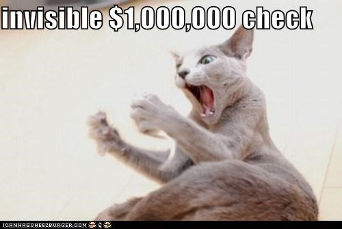 caption captioned cat check excited invisible million money shocked surprised - 5503267840