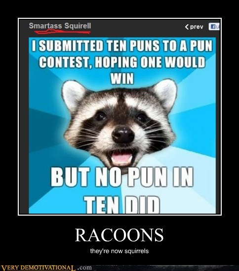 hilarious,Lame Pun Coon,raccoon,squirrel