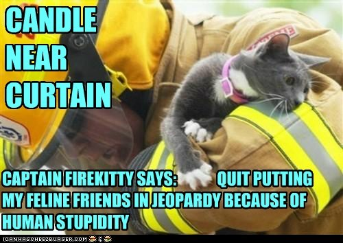 CANDLE NEAR CURTAIN CAPTAIN FIREKITTY SAYS: QUIT PUTTING MY FELINE FRIENDS IN JEOPARDY BECAUSE OF HUMAN STUPIDITY