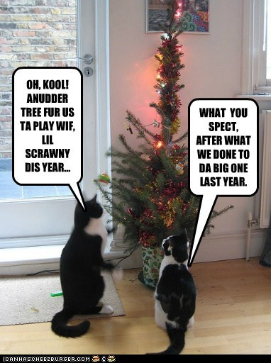 another caption captioned cat Cats christmas christmas tree cool last last year playing precaution recalling scrawny tree year - 5504214784
