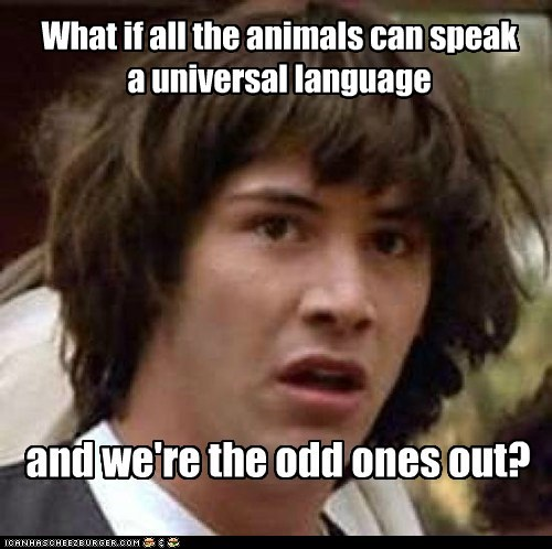 animals,animorphs,conspiracy keanu,humans,language,Sad