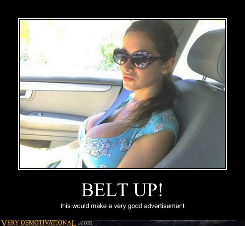 bewbs,hilarious,lady bags,seat belt,Sexy Ladies