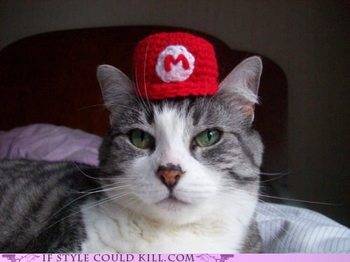 best of the week Cats cool accessories etsy hats mario super mario - 5505648896