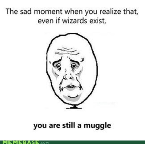 Harry Potter,muggle,Okay,wizards