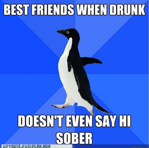 alcohol,Awkward,BFFs,booze,drinking,drunk,morning after,socially awkward penguin