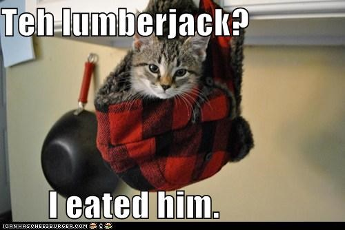 boss cat i ate him I Can Has Cheezburger i eated it im-the-boss lumberjack