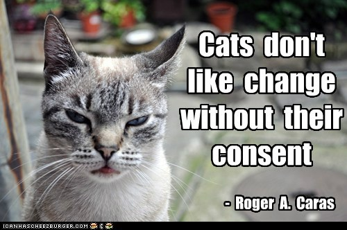 Cats don't like change without their consent - Roger A. Caras