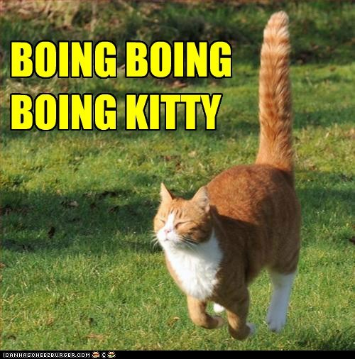 boing bouncing caption captioned cat happy hopping jumping tabby - 5507023616