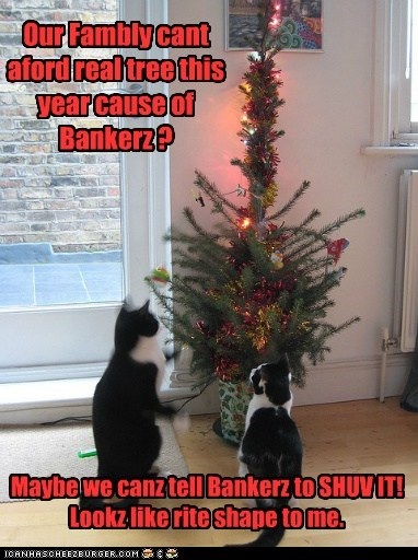 Our Fambly cant aford real tree this year cause of Bankerz ? Maybe we canz tell Bankerz to SHUV IT! Lookz like rite shape to me.