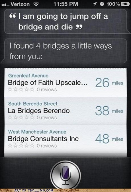 best of week,bridge,iphone,siri,suicide