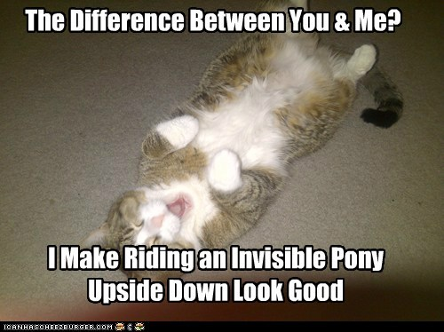 I Make Riding an Invisible Pony Upside Down Look Good The Difference Between You & Me?