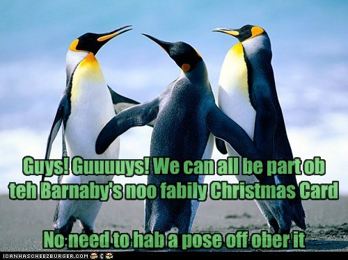 Guys! Guuuuys! We can all be part ob teh Barnaby's noo fabily Christmas Card No need to hab a pose off ober it