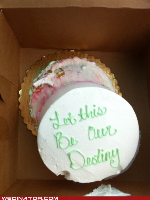 destiny FAIL funny wedding photos oops wedding cake - 5509174784