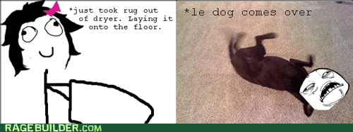 dogs dryer Rage Comics rug - 5509389312