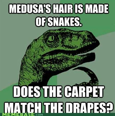 carpet,drapes,hiar,medusa,philosoraptor,snakes