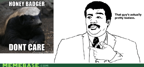 Badass,badger,give a darn,honey-badger-dont-care