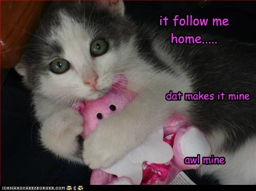 mine it follow me home..... dat makes it mine awl mine