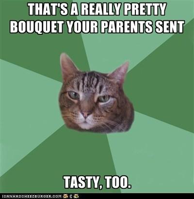 bouquet flowers memecats Memes tasty - 5510367232