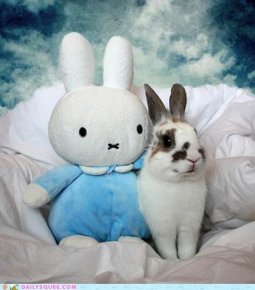 benefit best best part bunny friends friendship happy bunday rabbit stuffed animal - 5510545664