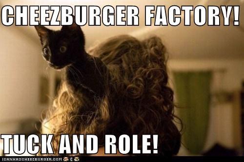 Cheezburger Image 5510566144