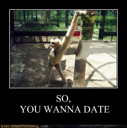 date hilarious monkey pose sexy times - 5511797248
