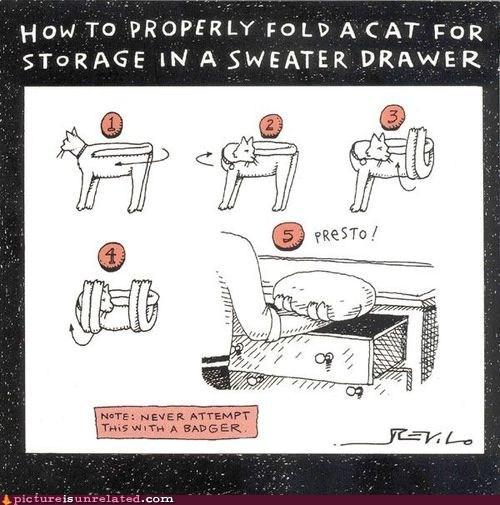animal cruelty best of week cat storage wtf - 5511863808