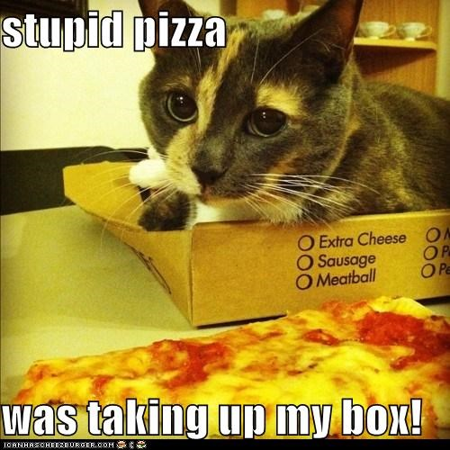 stupid pizza  was taking up my box!