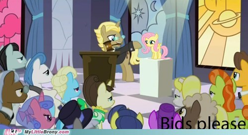 auction bids fluttershy TV want - 5512858624