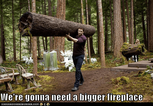 Emmett Cullen,fireplace,huge,Kellan Lutz,logs,twilight,wood