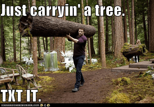 annoying facebook girl,carrying,carrying a tree,text it,tree