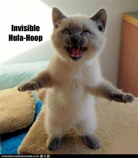 angry,attacking,caption,captioned,Cats,hula hoop,invisible,standing