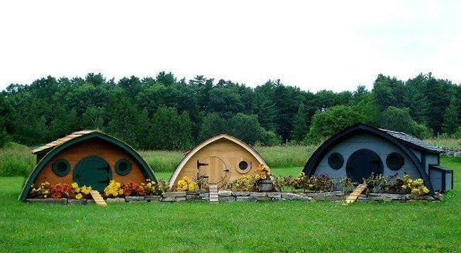 cool pet homes