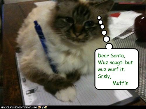 caption captioned cat dear letter naughty santa seriously was worth it writing