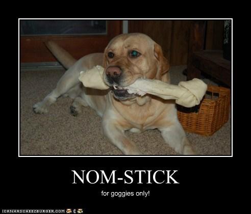 Cheezburger Image 5520346624