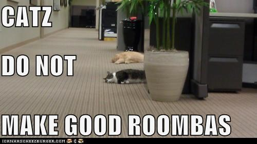 cat floor I Can Has Cheezburger lazy roomba sleeping - 5520407040