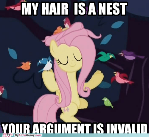 birds fluttershy meme nest party soft - 5520713984