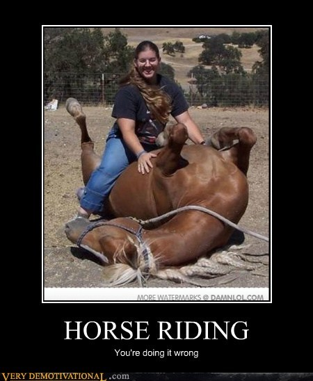 backwards eww hilarious horse riding