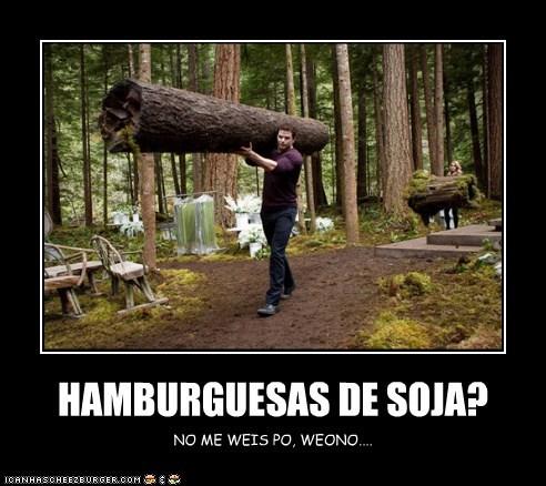 Cheezburger Image 5521656064