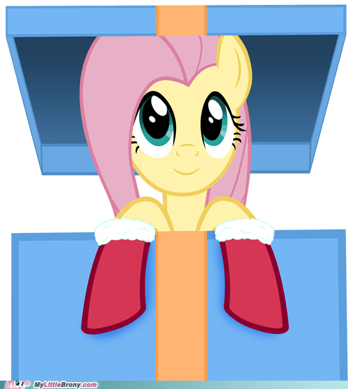 christmas cute fluttershy ponies present - 5521931264