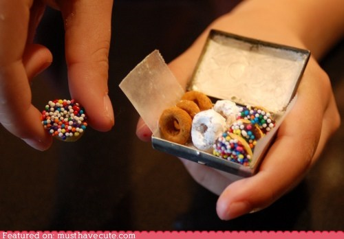 cheerios,chocolate,donuts,epicute,miniature,sprinkles