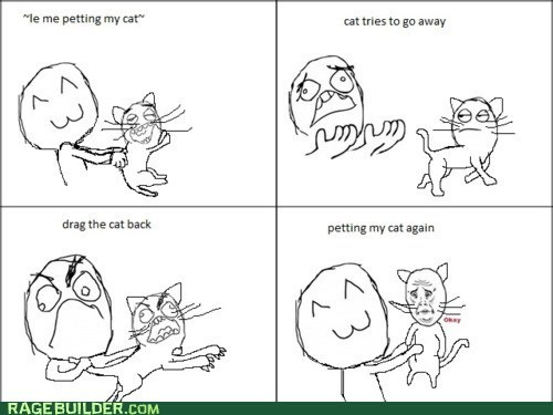 cat cute pet Rage Comics - 5522529024