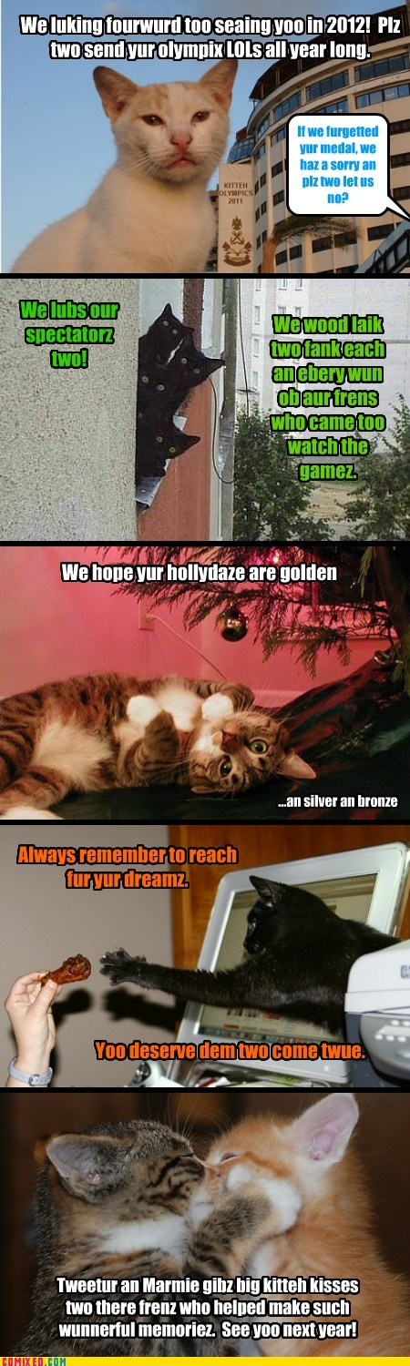 Kitteh Olympics Fank Youse